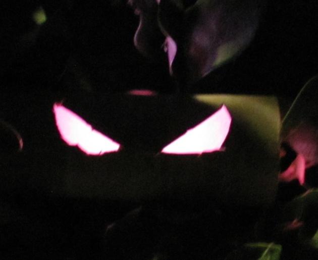 halloween 2013 023 edit